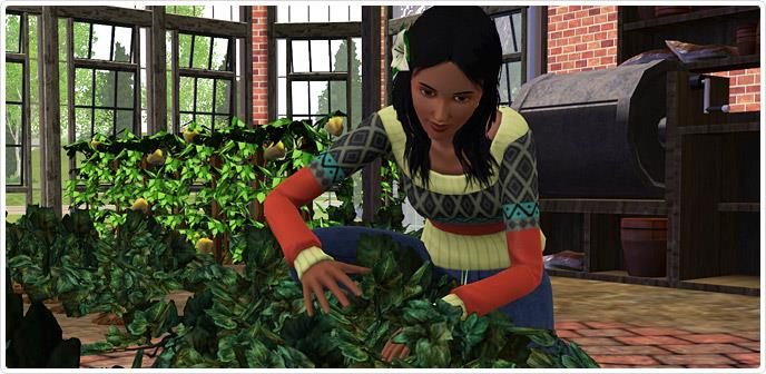 Image5 1 games4theworld downloads for Sims 3 store torrent